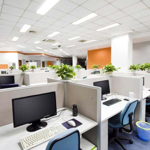 Moving more cellular: The impact of Covid on office design